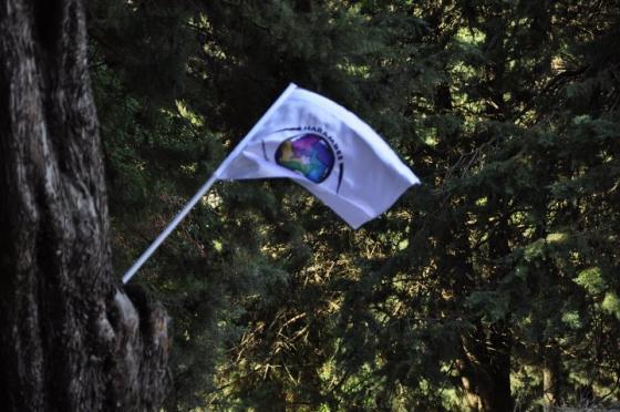 Bandiera di Harambee