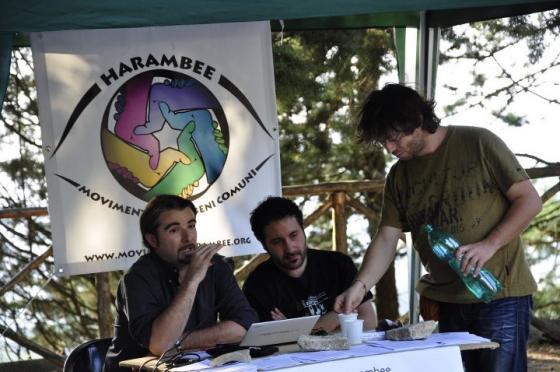 Intervento di Daniele Cambria dottore in Scienze forestali e ambientali