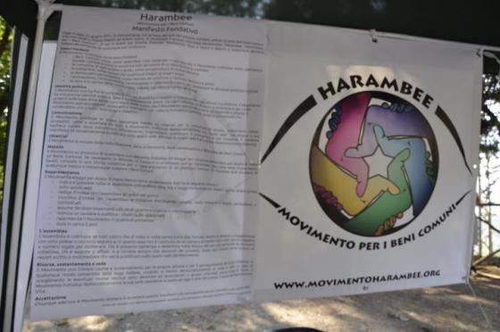 Il manifesto e il simbolo di Harambee
